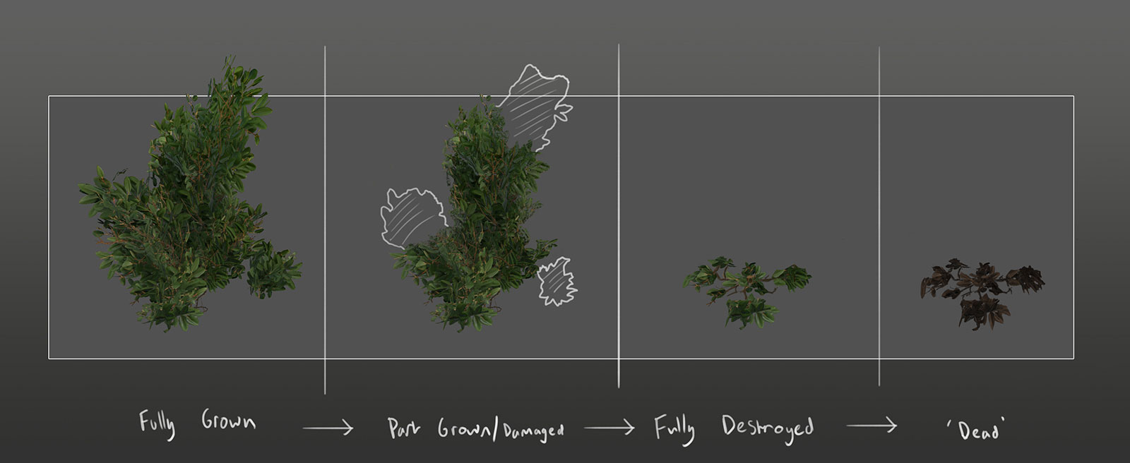 eden star bush concept damaged states