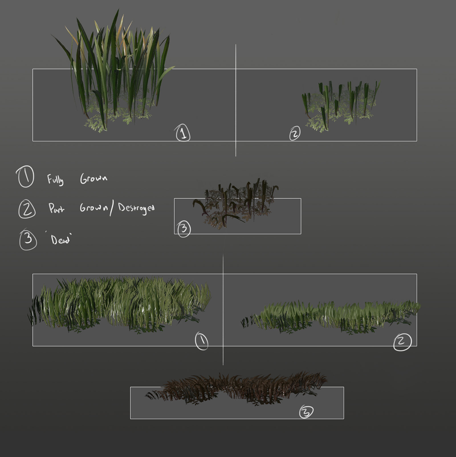 eden star grass concept damaged states